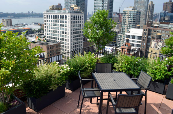 Co op and condo roof garden new york city ny ny by jeffrey erb for Rooftop landscape design
