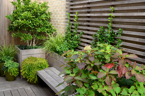 New York Garden Design ny region a landscape and a concept for all seasons Central Park West Garden Jeffrey Erb Landscape Design Nyc 10036